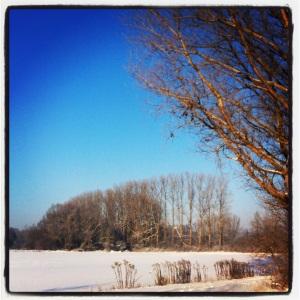 Schwäbisches Winterwonderland